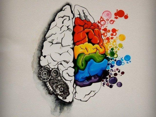 Como é dividida a sua mente?