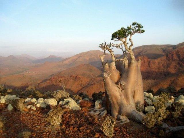 10 paisagens que parecem de outro planeta