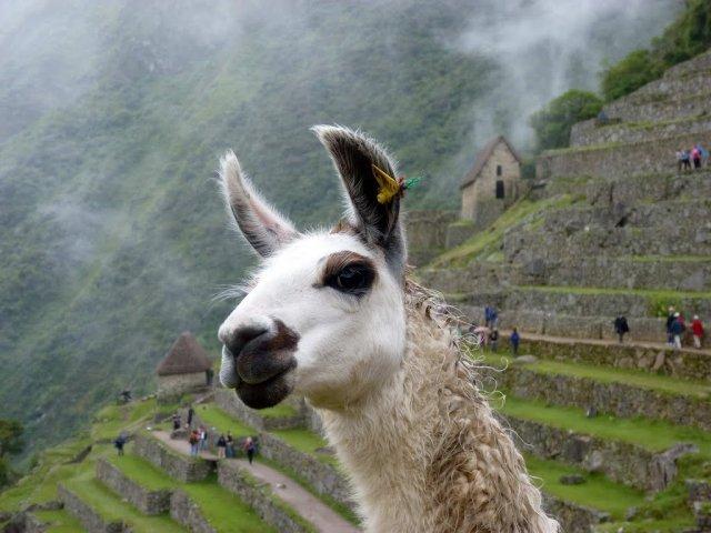 Top 10 experiências no Peru