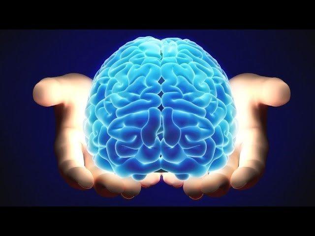 Qual lado do cérebro é o que você mais usa?