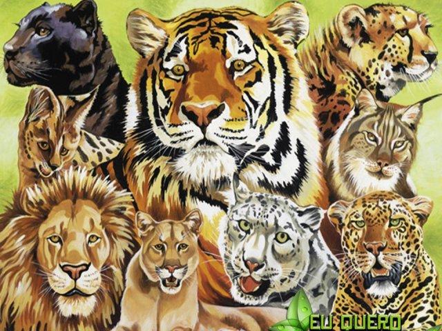Qual felino você seria?