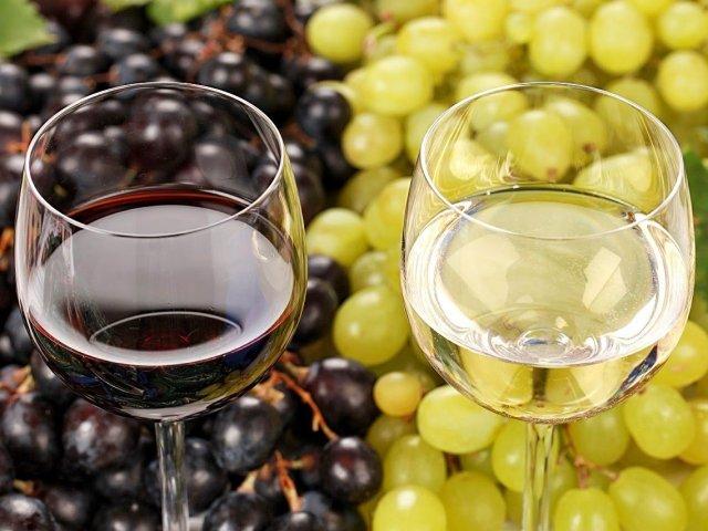 Que tipo de vinho combina contigo?
