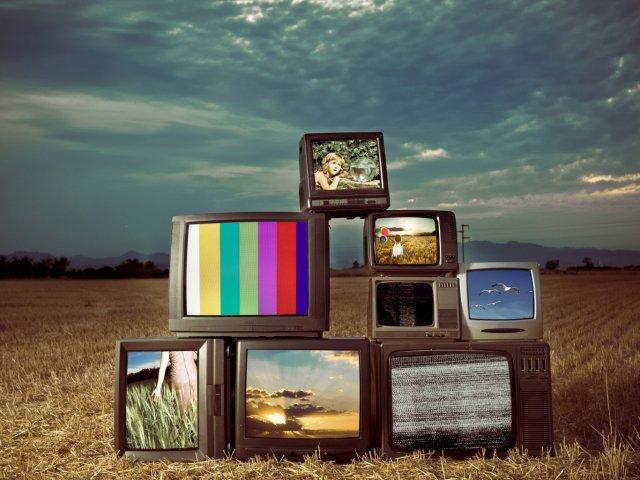 De qual programa de televisão você deveria participar?