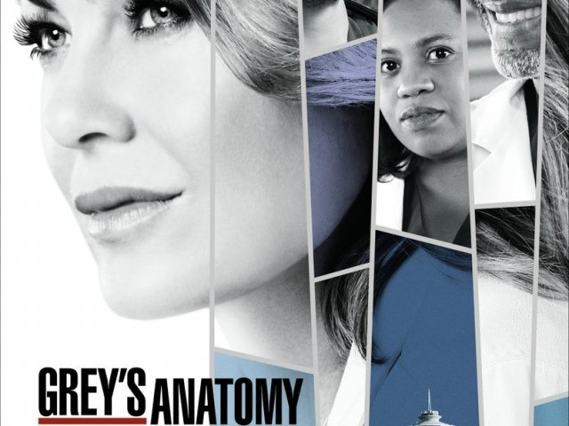 Super Quiz Grey's Anatomy - 1º/14º temporada.