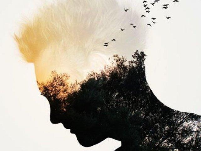 Qual é o seu nível de inteligência emocional?