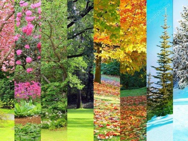 Qual estação de ano combina mais com você?