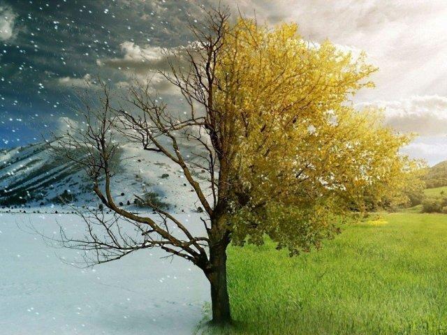 Inverno ou Verão? Qual mais combina com você?