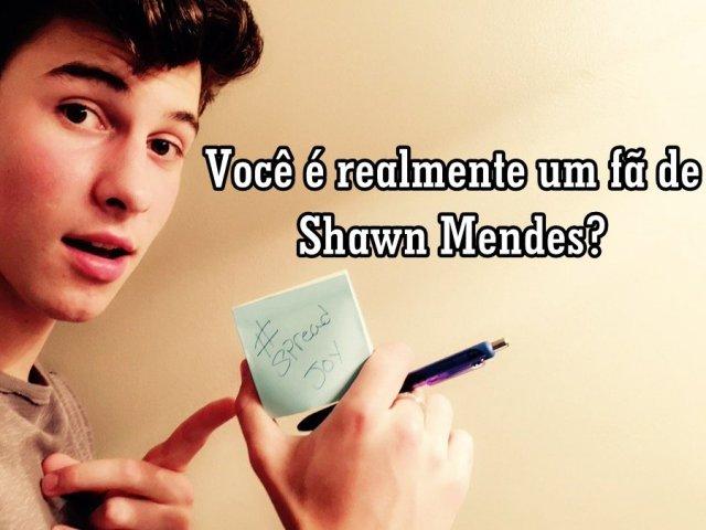 Você é realmente um fã de Shawn Mendes?